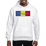 Romanian Air Command Hooded Sweatshirt