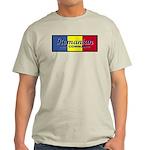 Romanian Air Command Ash Grey T-Shirt