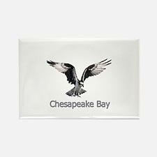 Chesapeake Bay Osprey Rectangle Magnet