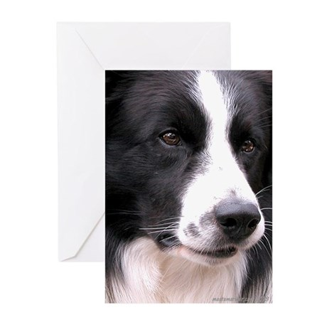 Border Collie Greeting Cards, Pack=6