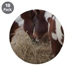 "pony kisses 3.5"" Button (10 pack)"