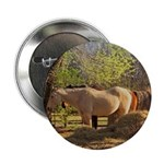 "Country Scene 2.25"" Button"
