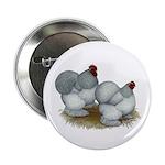 "Cochins: Self Blue 2.25"" Button"