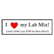 I Love my Lab Mix Bumper Sticker (male)