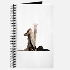 Funny Sugarglider Journal