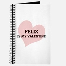 Felix Is My Valentine Journal