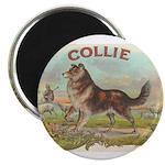Collie antique label Magnet