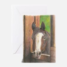 Pretty Bay Mare I Greeting Cards