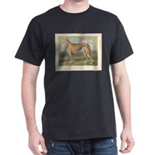 Greyhound Dog antique print T-Shirt