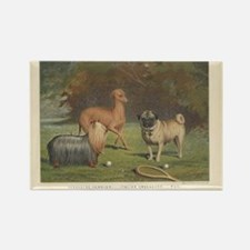Three Dogs antique print Rectangle Magnet