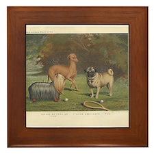 Three Dogs antique print Framed Tile