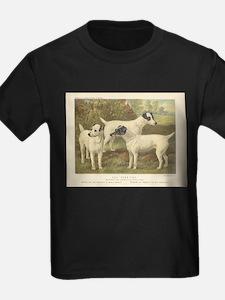 Fox Terriers antique print T