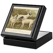 Fox Terriers antique print Keepsake Box