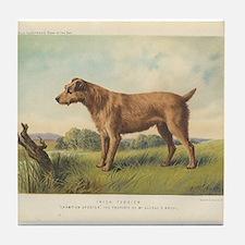 Cute Irish Terrier print Tile Coaster