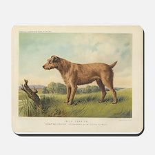 Cute Irish Terrier print Mousepad
