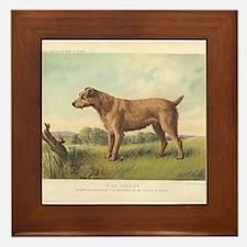 Cute Irish Terrier print Framed Tile