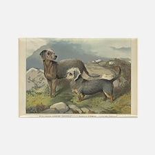 Dandie Dinmon & Terrier print Rectangle Magnet (10