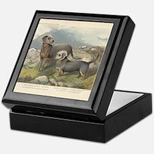 Dandie Dinmon & Terrier print Keepsake Box