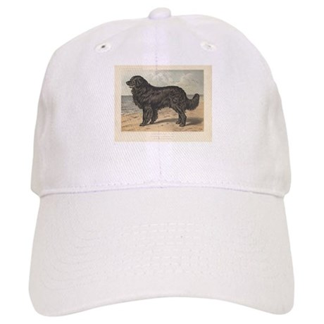 Newfoundland Dog antique prin Cap