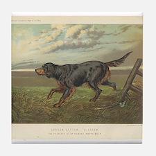 Hunting Dog antique print Tile Coaster