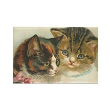 Two Cats Rectangle Magnet