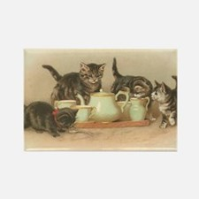 Kittens and Tea Cups 2 Rectangle Magnet