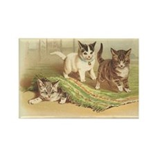 Playful Kittens Rectangle Magnet