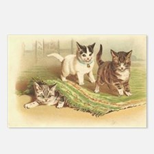 Playful Kittens Postcards (Package of 8)