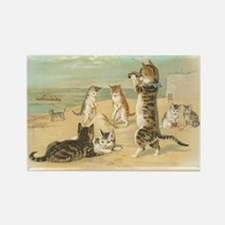 Kitties on the Beach Rectangle Magnet (100 pack)