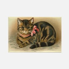 Grey Tabby Victorian Cat Rectangle Magnet
