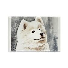 Samoyed Puppy Rectangle Magnet (10 pack)