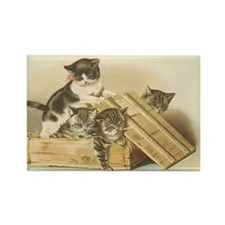 More Kittens in a Box Rectangle Magnet