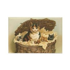 Calico Cat and Kittens in Bas Rectangle Magnet
