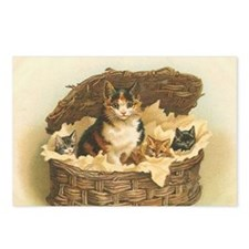 Calico Cat and Kittens in Bas Postcards (Package o