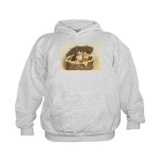 Calico Cat and Kittens in Bas Hoodie