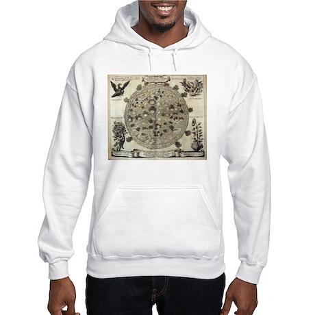 Antique Sunspots Chart Hooded Sweatshirt
