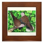 Ringneck Doves Framed Tile