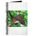 Ringneck Doves Journal