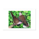Ringneck Doves Mini Poster Print
