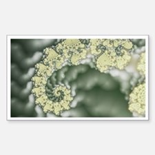 Coral Fractal Rectangle Decal