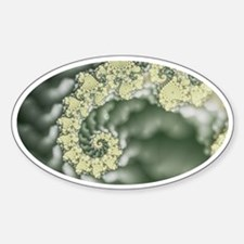 Coral Fractal Oval Decal