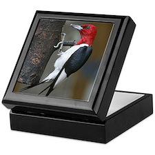 Red Headed Woodpecker Keepsake Box