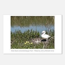 Mute Swan at Schollenberger Park Postcards 8