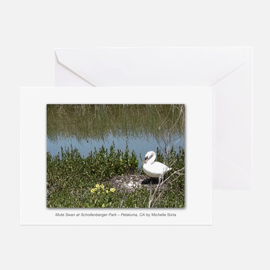 Mute Swan at Schollenberger Park Greeting Card