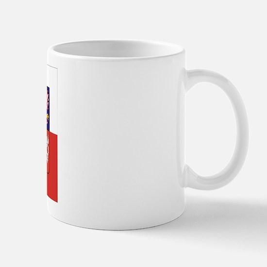 Czech Republic Flag & Seal Mug