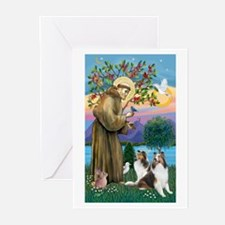 St. Francis (V-W)-Two Shelties Greeting Cards (Pk