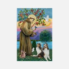 St. Francis (V-W)-Two Shelties Rectangle Magnet