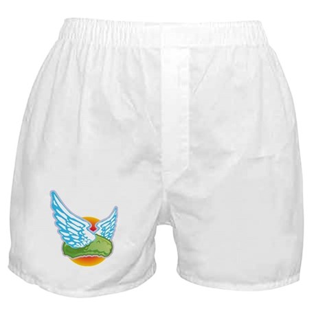 The Flying Pickle Boxer Shorts