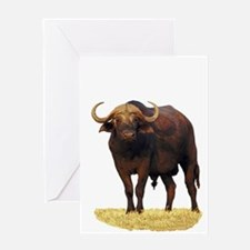 African Water Buffalo Greeting Card