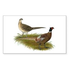 Ringneck Pheasant Pair Decal